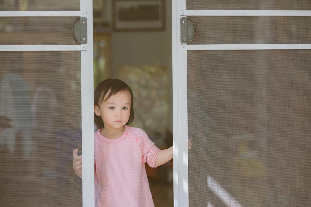 mosquitera puerta